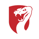 Viper Capital Partners logo